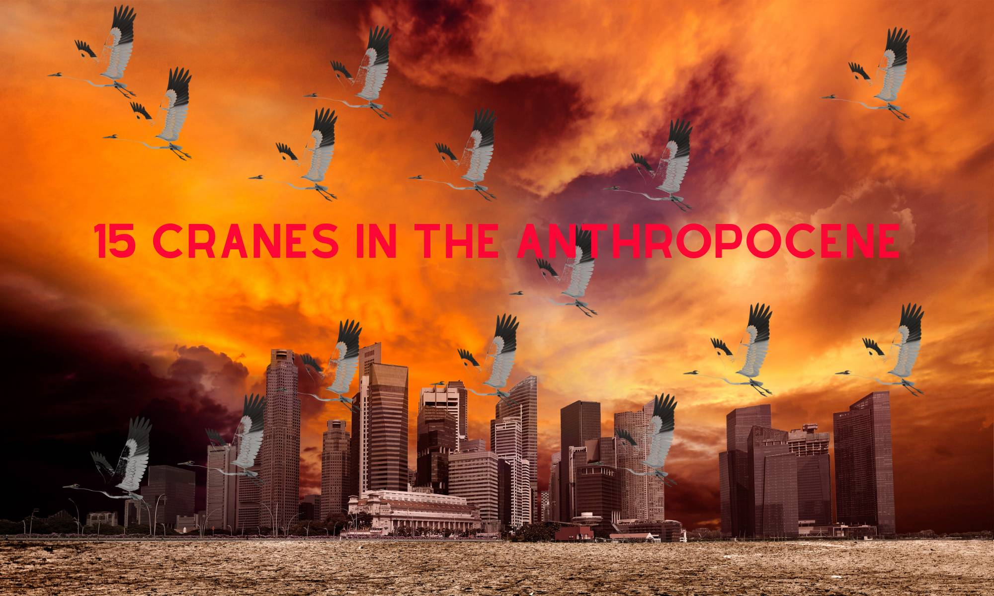 15 Cranes in the Anthropocene