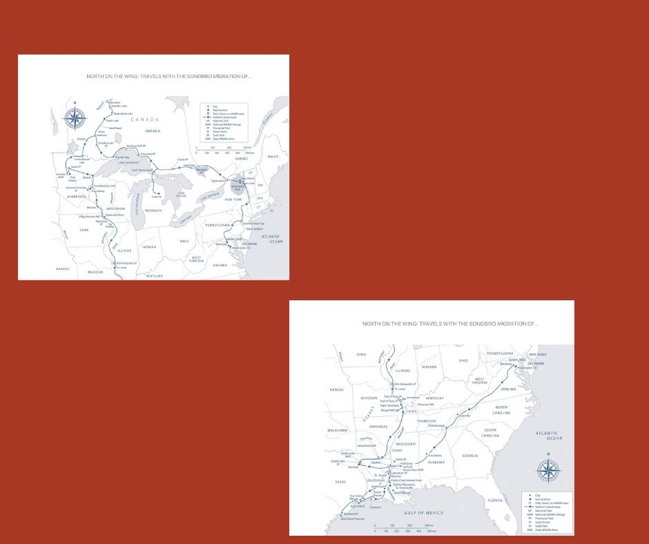 Maps from North on the Wing
