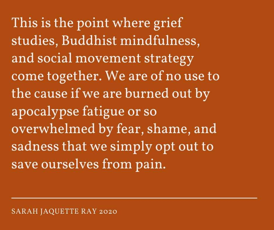 Sarah Jaquette Ray quote